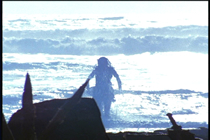 Xena film locations - Little Problems - Bethells Beach - To Helicon and Back